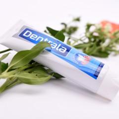 丹纯牙膏(冰爽薄荷) 120g/支